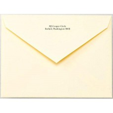 Envelope White Wove Regular Raise Printed No.6
